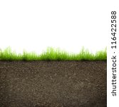 green grass with in soil... | Shutterstock . vector #116422588