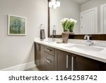 bathroom modern interior with... | Shutterstock . vector #1164258742