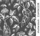 realistic botanical ink sketch... | Shutterstock .eps vector #1164361138