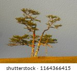 lonely shamanic pine with... | Shutterstock . vector #1164366415