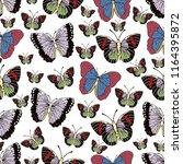 butterfly cartoon drawing... | Shutterstock .eps vector #1164395872