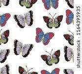 butterfly cartoon drawing... | Shutterstock .eps vector #1164395935