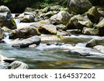 forest stream running over... | Shutterstock . vector #1164537202