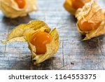 physalis fruit  physalis...   Shutterstock . vector #1164553375