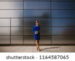 beautiful business woman | Shutterstock . vector #1164587065