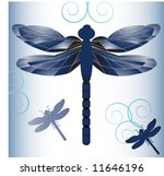 dragonfly elements for your... | Shutterstock .eps vector #11646196