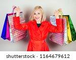 beautiful blonde cheerful woman ... | Shutterstock . vector #1164679612
