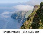red legged  rissa brevirostris  ...   Shutterstock . vector #1164689185