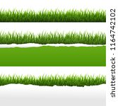 green grass and ripped paper... | Shutterstock . vector #1164742102