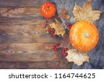 autumn time background ... | Shutterstock . vector #1164744625
