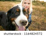 portrait of a big dog and a... | Shutterstock . vector #1164824572
