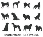 Stock vector sets of silhouette dog in various species create by vector 116495356