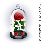Stock vector red eternal rose under sparkling crystal dome on white background 1164957232