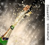 celebration theme with... | Shutterstock . vector #116499952