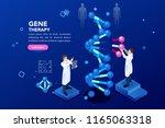 health and biochemistry...   Shutterstock .eps vector #1165063318