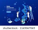 health and biochemistry... | Shutterstock .eps vector #1165067065