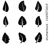 leaf icon set | Shutterstock .eps vector #1165072615