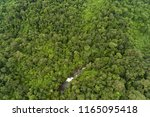 aerial top view green forest... | Shutterstock . vector #1165095418