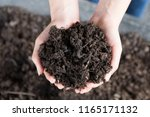 close up hands holding and... | Shutterstock . vector #1165171132