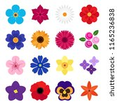 collection of colorful flowers... | Shutterstock . vector #1165236838