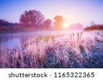 november landscape. autumn... | Shutterstock . vector #1165322365