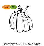 doodle pumpkin.vector paint... | Shutterstock .eps vector #1165367305