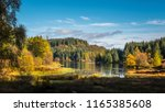 autumn or fall in the queen... | Shutterstock . vector #1165385608
