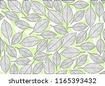 abstract leaf background... | Shutterstock .eps vector #1165393432