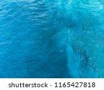 deep blue and green sea surface ... | Shutterstock . vector #1165427818