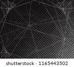 black transparent background... | Shutterstock .eps vector #1165443502
