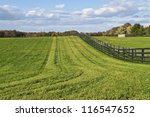 """""""Rural Landscape"""" Green pastures and a bright blue sky with puffy clouds in rural Central New Jersey. - stock photo"""