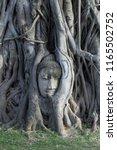 buddha head in tree  wat maha... | Shutterstock . vector #1165502752