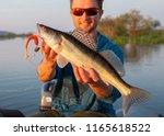 amatuer angler holds fish ... | Shutterstock . vector #1165618522