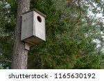 Owl Nesting Box In Sweden