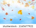 nature landscape background... | Shutterstock .eps vector #1165677922