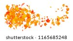 abstract autumn banner template ... | Shutterstock .eps vector #1165685248
