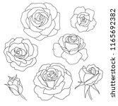 silhouette of roses   Shutterstock .eps vector #1165692382
