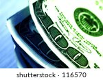 hundreds with color tinting   ... | Shutterstock . vector #116570