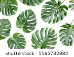 texture tropical palm leaves... | Shutterstock . vector #1165732882