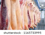 the meat factory. pork hanging... | Shutterstock . vector #1165733995