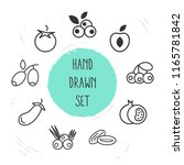 set of berry icons line style... | Shutterstock . vector #1165781842