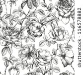 vintage floral seamless pattern ... | Shutterstock .eps vector #116578882
