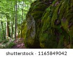 Moss Covered Large Boulders Or...