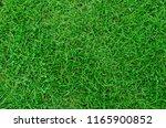 green grass background texture .... | Shutterstock . vector #1165900852