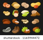 set of nuts icons. hazelnut ... | Shutterstock .eps vector #1165944472