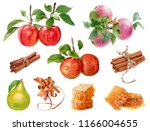 watercolor fresh  ripe red and... | Shutterstock . vector #1166004655