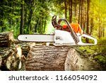 forest and photo of chainsaw  | Shutterstock . vector #1166054092