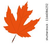 orange autumn maple leaf | Shutterstock .eps vector #1166086252