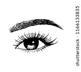 woman eyes with long eyelashes. ...   Shutterstock .eps vector #1166133835