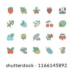 forest berries colored flat... | Shutterstock .eps vector #1166145892